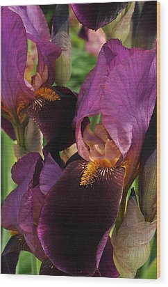 Wood Print featuring the photograph A Bouquet Of Lilies by Sabine Edrissi