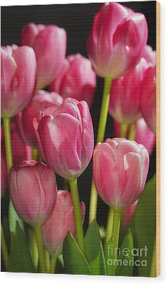 A Bouquet Of Pink Tulips Wood Print