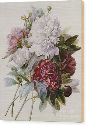 A Bouquet Of Red Pink And White Peonies Wood Print by Pierre Joseph Redoute