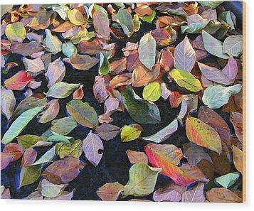 A Bowl Of Autumn Wood Print by Paula Tohline Calhoun
