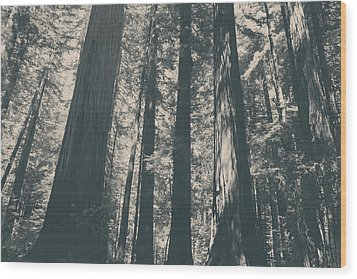 A Breath Of Fresh Air Wood Print by Laurie Search