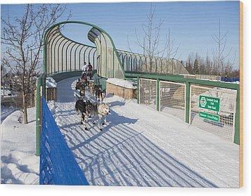 A Bridge In The Iditarod  Wood Print by Tim Grams