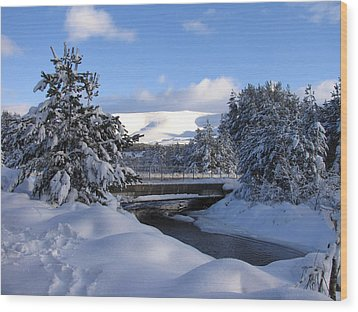 A Bridge In The Snow Wood Print