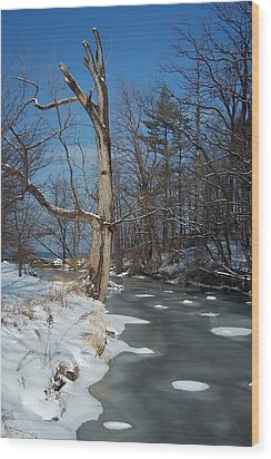 A Bright January Day By A Stream Wood Print