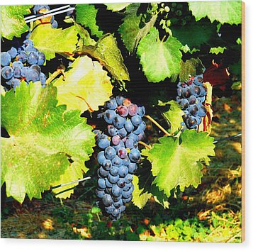 A Bunch Of Grapes Wood Print by Kay Gilley