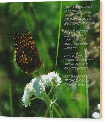 A Butterfly Poem About Love Wood Print by Jeff Swan