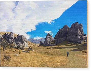 Wood Print featuring the photograph A Castle Hill Walk by Stuart Litoff