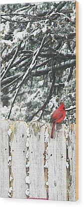 A Christmas Cardinal Wood Print