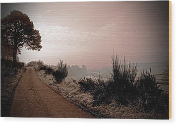 Wood Print featuring the photograph A Cold And Frosty Morning by Liz  Alderdice