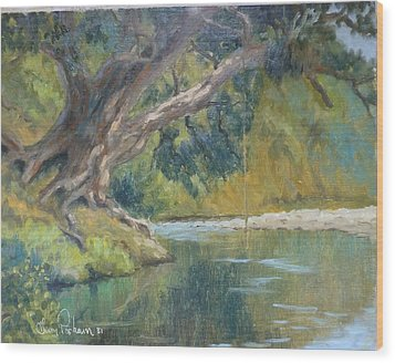 A Coramandel Stream Wood Print by Terry Perham