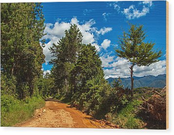 A Country Road In Colombia. Wood Print by Jess Kraft