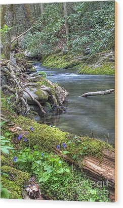 A Creek Side Hike Wood Print