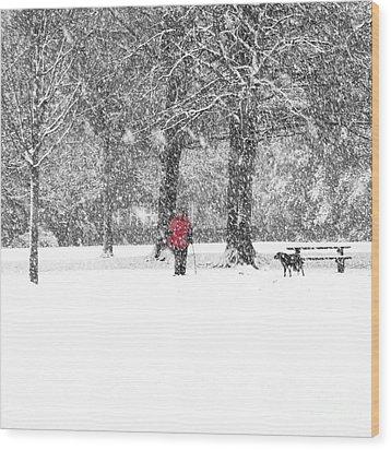 A Dash Of Red Wood Print by Karin Ubeleis-Jones