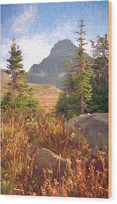 A Day At Glacier Wood Print by Richard Rizzo