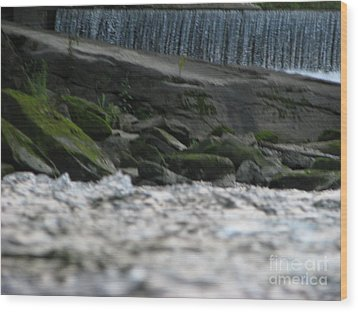 Wood Print featuring the photograph A Day At The River by Michael Krek