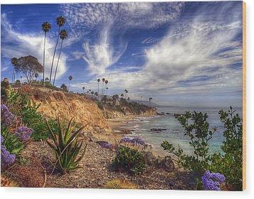 A Day In Laguna Beach Wood Print by Sean Foster