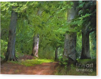 A Day In The Forest Wood Print by Lutz Baar