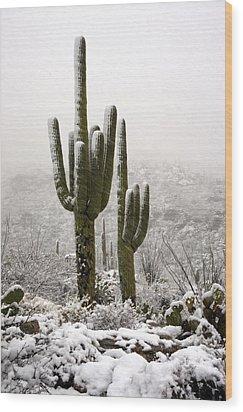 A Desert Southwest Snow Day  Wood Print by Saija  Lehtonen
