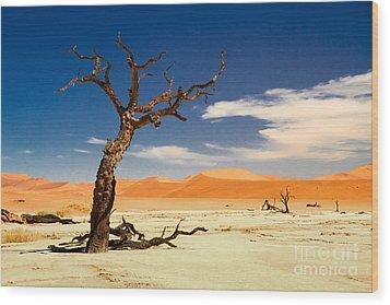 A Desert Story Wood Print