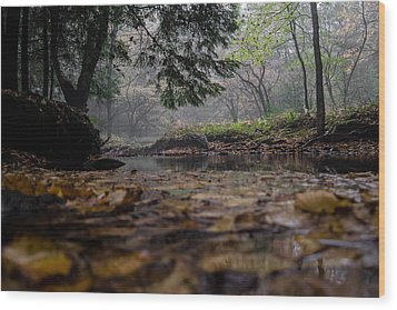 A Different Point Of View Wood Print by Anthony Thomas