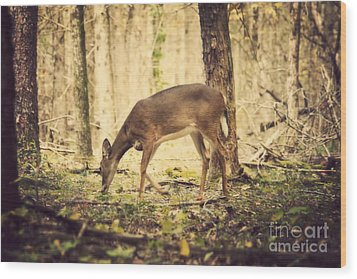 A Doe In The Forest Wood Print by Lena Auxier