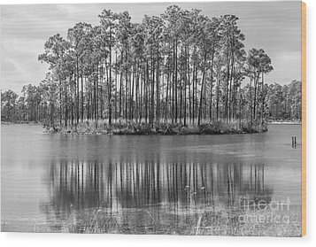 A Dream Of Fantasy Island Wood Print by Rene Triay Photography