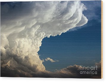 Wood Print featuring the photograph A Face In The Clouds by Barbara Chichester