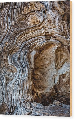 Wood Print featuring the photograph A Face In The Wood by Beverly Parks