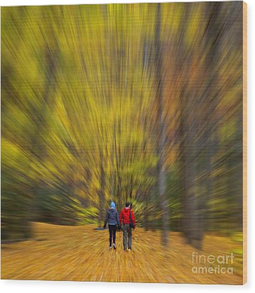 Wood Print featuring the photograph A Fall Stroll Taughannock by Jerry Fornarotto