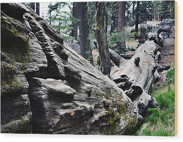 Wood Print featuring the photograph A Fallen Giant Sequoia by Kyle Hanson