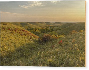 A Flint Hills View Wood Print by Scott Bean