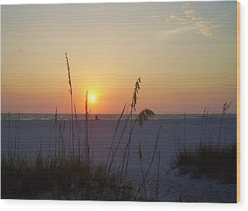 A Florida Sunset Wood Print by Cynthia Guinn