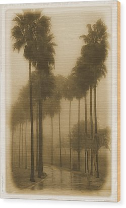 Wood Print featuring the photograph A Foggy Day by Joseph Hollingsworth