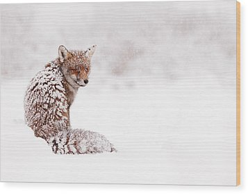 A Red Fox Fantasy Wood Print by Roeselien Raimond