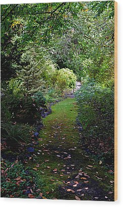 Wood Print featuring the photograph A Garden Path by Anthony Baatz