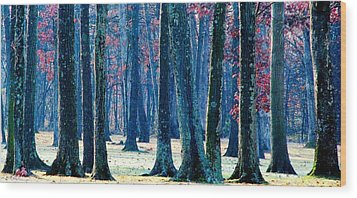 Wood Print featuring the photograph A Gathering Of Trees by Angela Davies