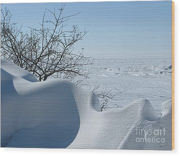 Wood Print featuring the photograph A Gentle Beauty by Ann Horn