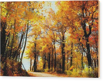 A Golden Day Wood Print by Lois Bryan