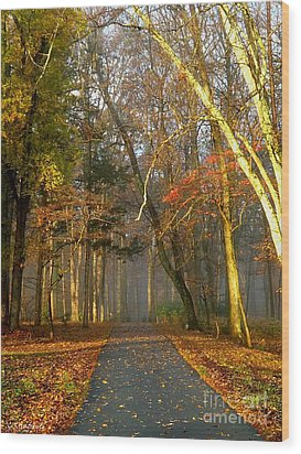 A Golden Path Wood Print by Christy Ricafrente