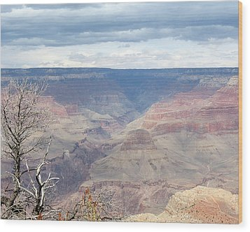 A Grand Canyon Wood Print by Laurel Powell