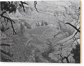 A Grand View Wood Print by Richie Stewart