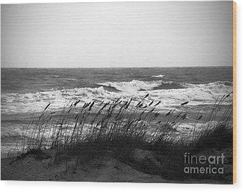 A Gray November Day At The Beach Wood Print by Susanne Van Hulst
