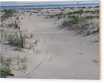 A Gull's Walk To The Ocean Wood Print