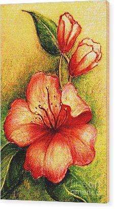 A Harbinger Of Springtime Wood Print