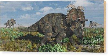 A Herd Of Albertaceratops Wood Print by Mark Stevenson