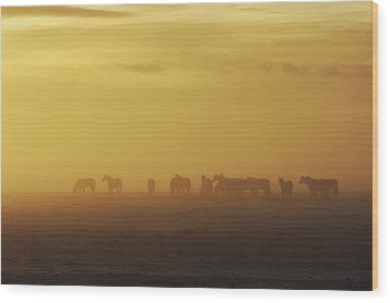 A Herd Of Horses In The Morning Fog Wood Print by Roberta Murray