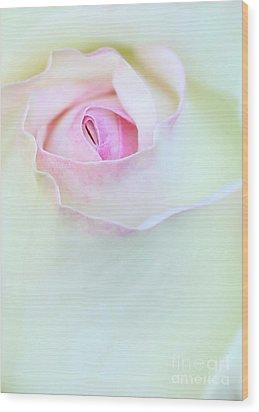 A Hint Of Pink Wood Print by Sabrina L Ryan