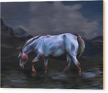 A Horse Of Many Colors Wood Print by Tyler Robbins