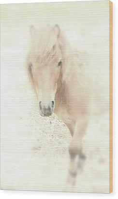 A Horse's Spirit Wood Print by Karol Livote