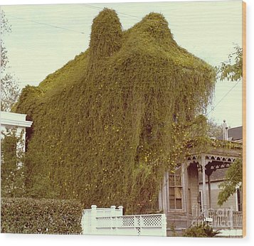 A House Is A Home Is A House Of Vine Wood Print by Michael Hoard